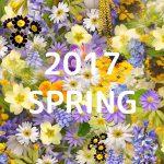 2017年春アニメ俺的ベスト5!第2位は「ロクでなし魔術講師と禁忌教典」